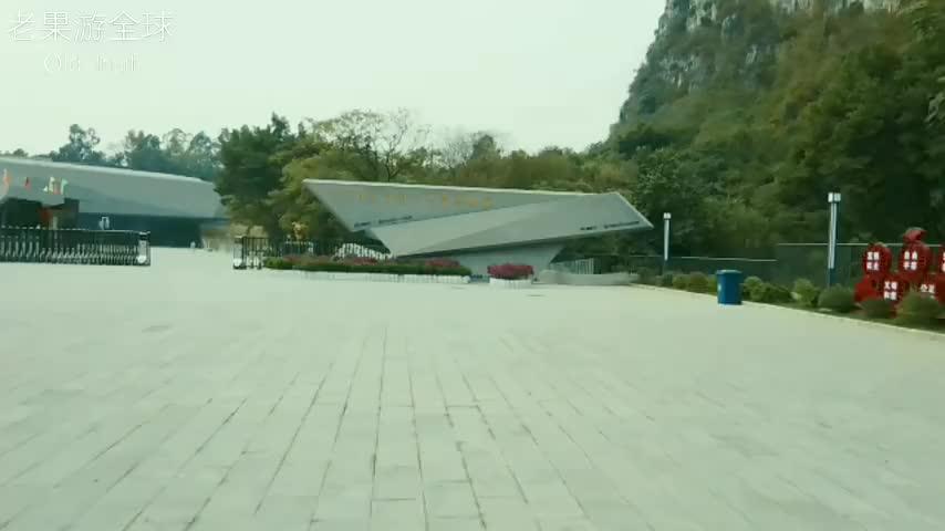 柳州白莲洞洞穴博物馆,看看这里数万年前罕见化石,都是值钱货