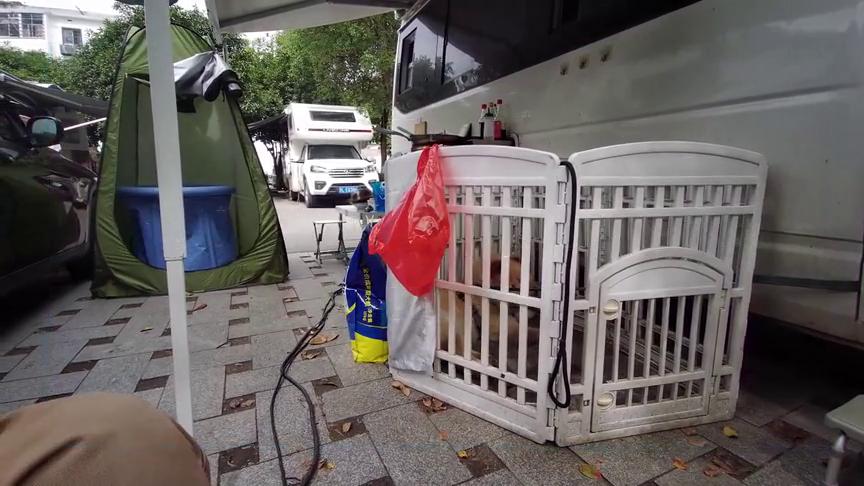房车和床车应该如何选择车载小冰箱