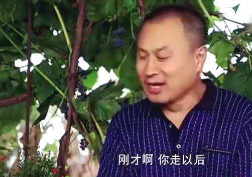 乡村爱情老七带人给刘能道歉,给刘能台阶还不下,太搞笑了!