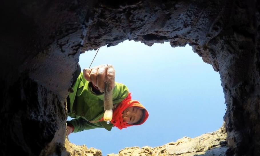 农村海边古老的抓捕方式,石碾子压蛏王,一只4两,百多元一斤