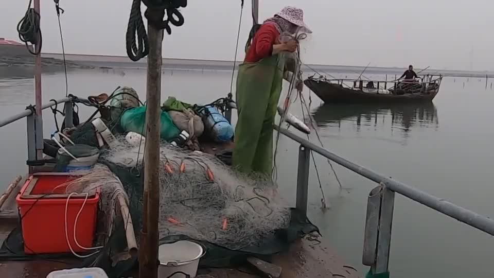 赶海大叔出海打渔,捕了条身含剧毒的大货,对这个值钱货是又爱又