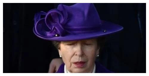 英国安妮公主会议上忘关麦,背地嘲讽与会成员,厚脸当无事发生
