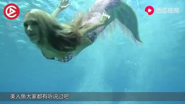 """大叔潜水遇到""""美人鱼"""",还一起游泳,场面难得一见!"""