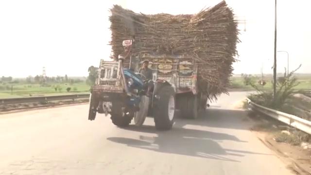 没有三农的拖拉机经验,都不敢拉这一车甘蔗,实在是风险太大