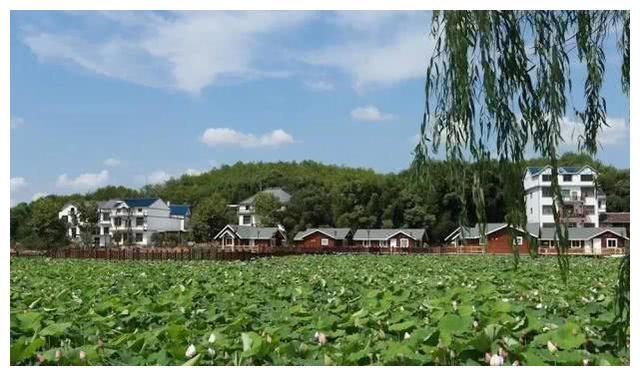 江西上饶一县城,面积仅655平方千米,却有亚洲最大的铌钽矿!