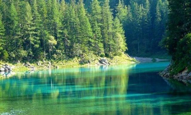 奥地利翠湖 湖水翠绿清澈见底