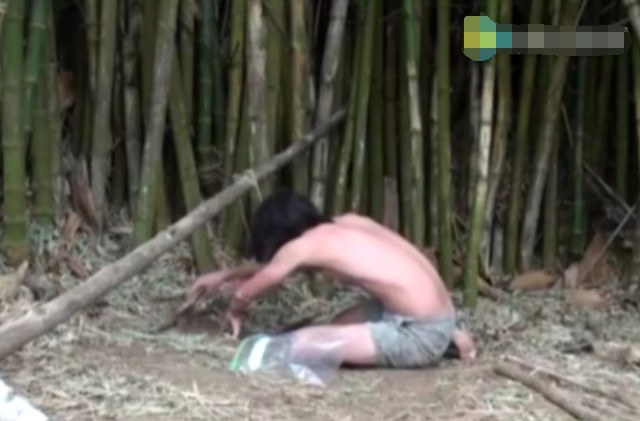 男子将挖空的竹子埋在泥土里,第二天抓到这种大家伙