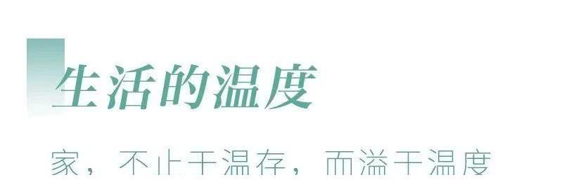金辉集团宣传片首发