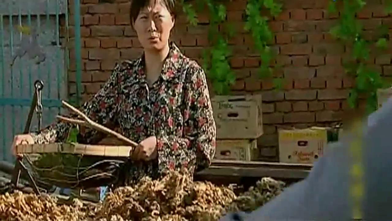 谢广坤准备礼物要去看望刘能,刘大脑袋打来电话王长贵高兴坏了