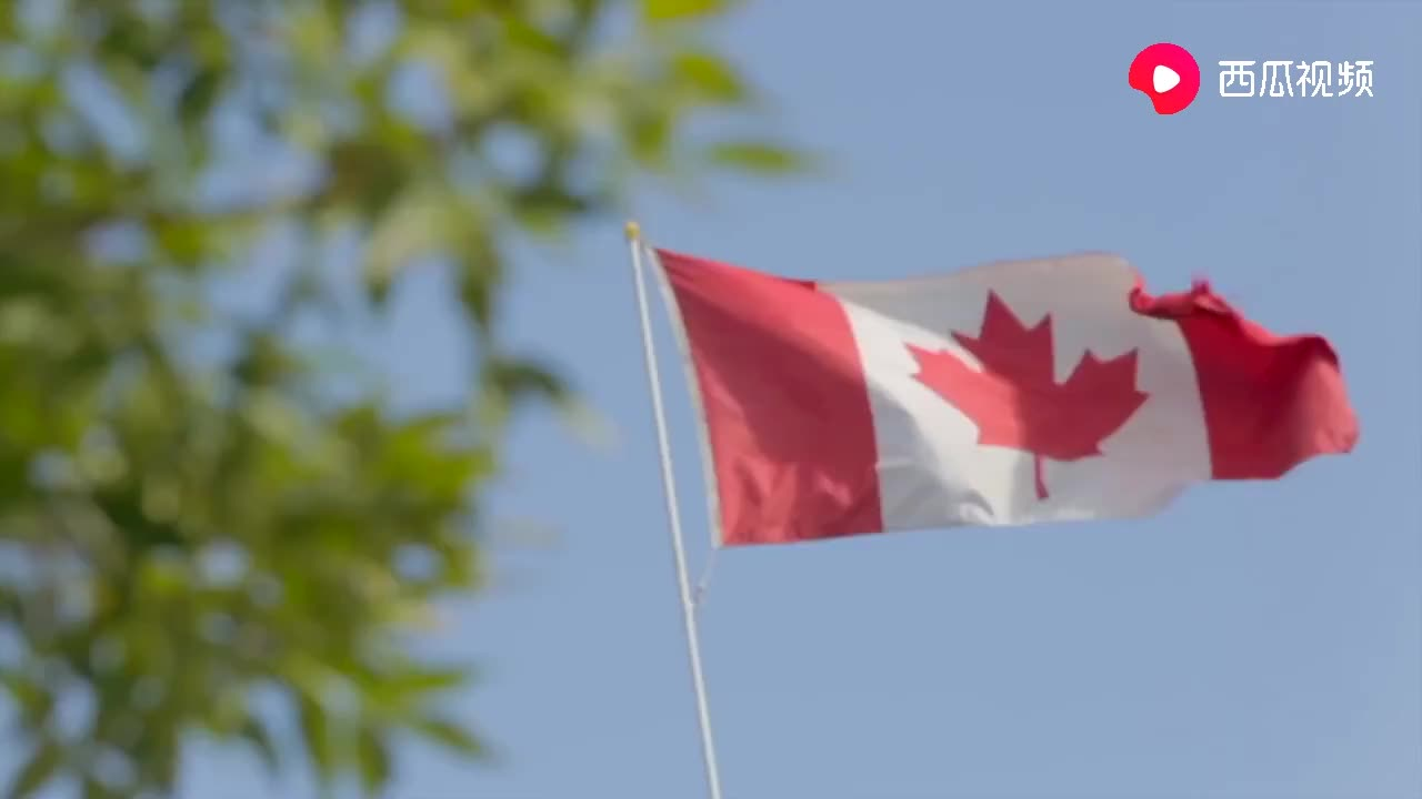 公开讽刺特朗普特鲁多加拿大应对新冠比很多国家好,包括美国