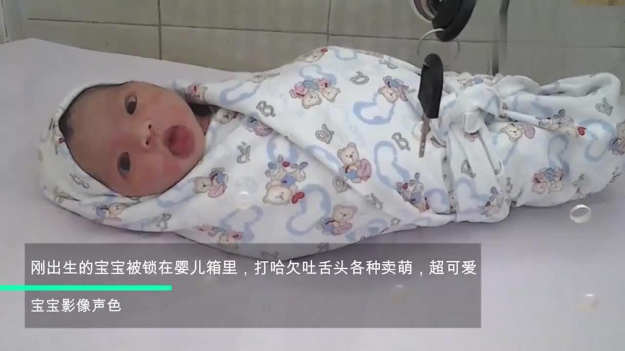 刚出生的宝宝被锁在婴儿箱里,打哈欠吐舌头各种卖萌,超可爱