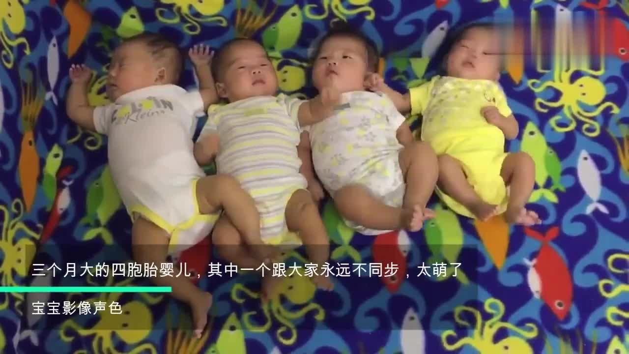三个月大的四胞胎婴儿,其中一个跟大家永远不同步,太萌了