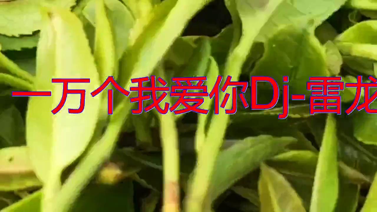一首《一万个我爱你Dj-雷龙》,凤箫鸾管,嗓音清澈悦耳