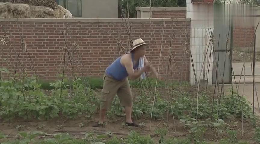 老爸让淘小子去买竹竿,淘小子却买回来一袋猪肝,尴尬了