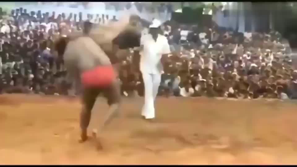 格斗技能死亡翻滚,任何武术,搏击在他面前都不堪一击!