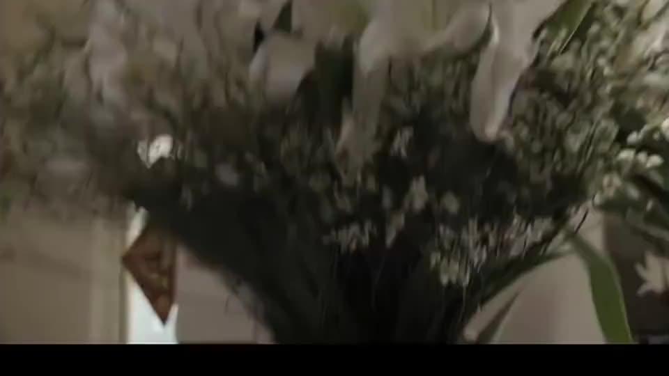 花蕾蕾从学武的公司辞职,学武山门送钱,却被二弟在楼下撞见!