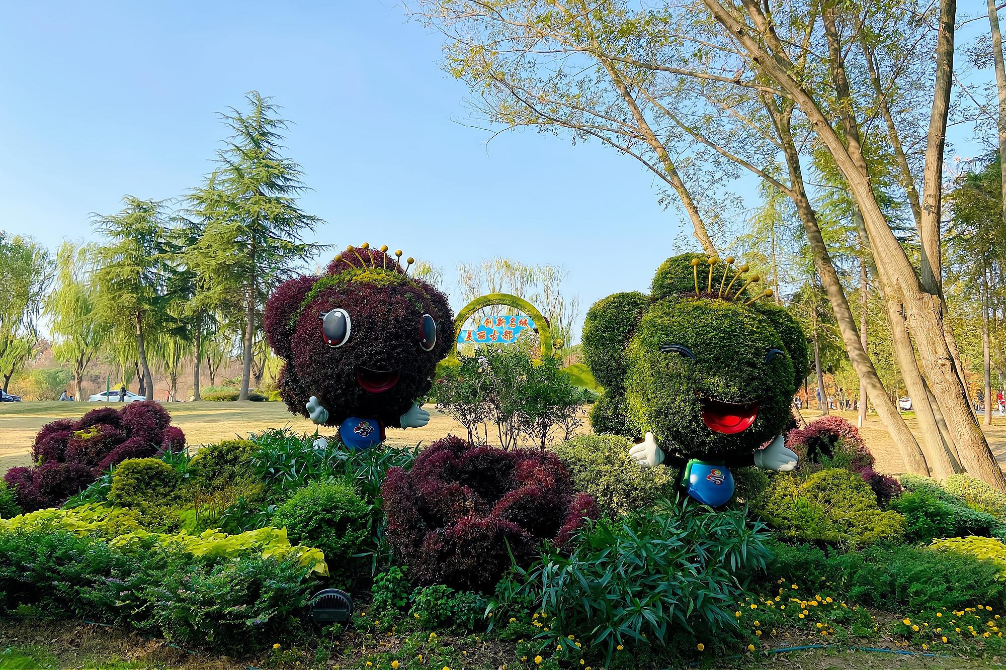 南京明孝陵不只有石象路,还有五彩缤纷的水杉林,已到最佳观赏期