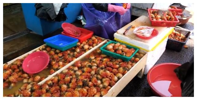 """大妈街边甩卖""""它"""",以为是草莓,卖80元一斤,看清后买走十斤!"""
