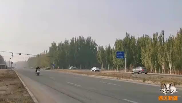新疆阿克苏农村早上7℃,满园苹果随便摘一个都脆甜好吃,牙齿冻