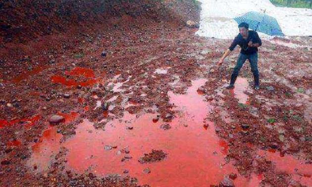 中国最诡异的河流:下雨后河水如鲜血,河两岸毒蛇密布