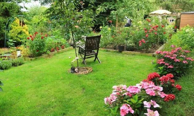 若想庭院变花园和菜园,以下几点是关键,做到位轻松实现!