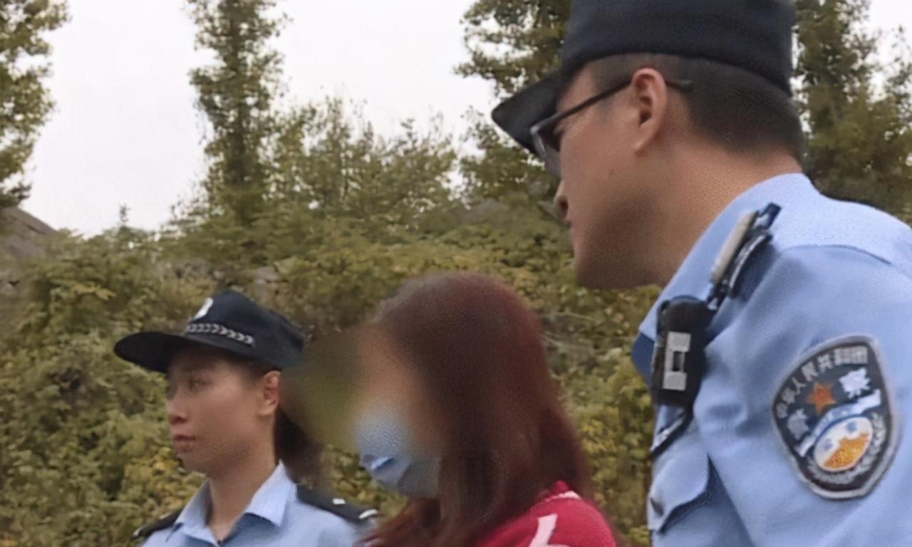 """山东淄博:夫妻俩开车偷""""食材"""",吃不完就卖掉,月入6000元"""