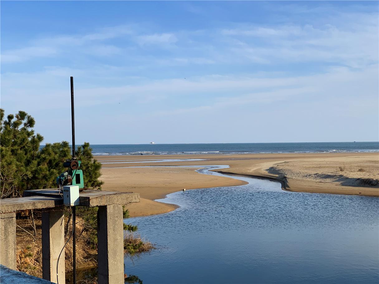 日照旅游沿海景点一览,必打卡碧海沙滩怎么选,这份攻略盘点图3