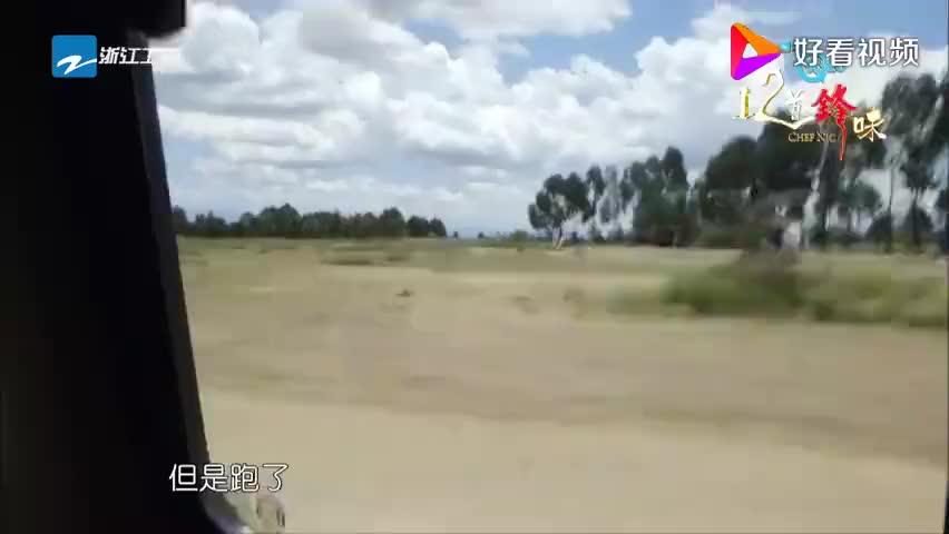 """十二道锋味:谢霆锋杨紫琼深入肯尼亚草原,在赤道上实验""""立蛋"""""""