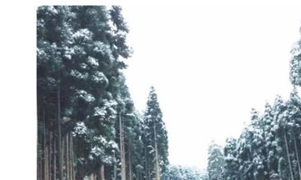 """成都周边这5个旅游胜地,下过雪后,简直""""美爆了"""""""