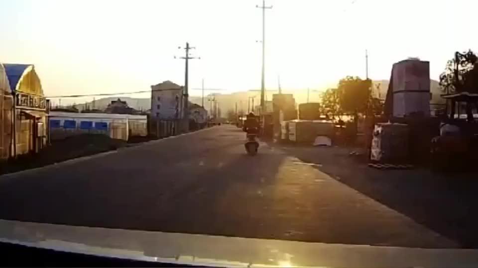 让你装单手开车好酷撞倒了还酷吗