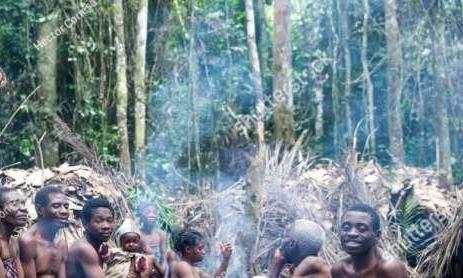 非洲小人族:俾格米人身材如此矮小,为什么能10岁前结婚生子?