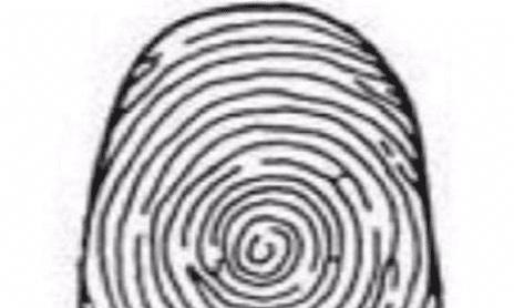心理学:你的大拇指,是第几种形状?看看你的后半生有没有好运