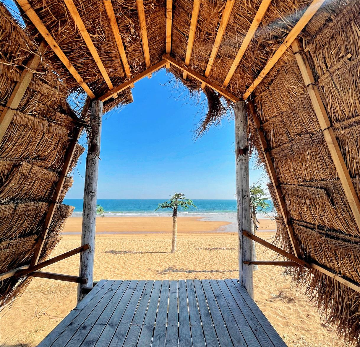 日照旅游沿海景点一览,必打卡碧海沙滩怎么选,这份攻略盘点图1
