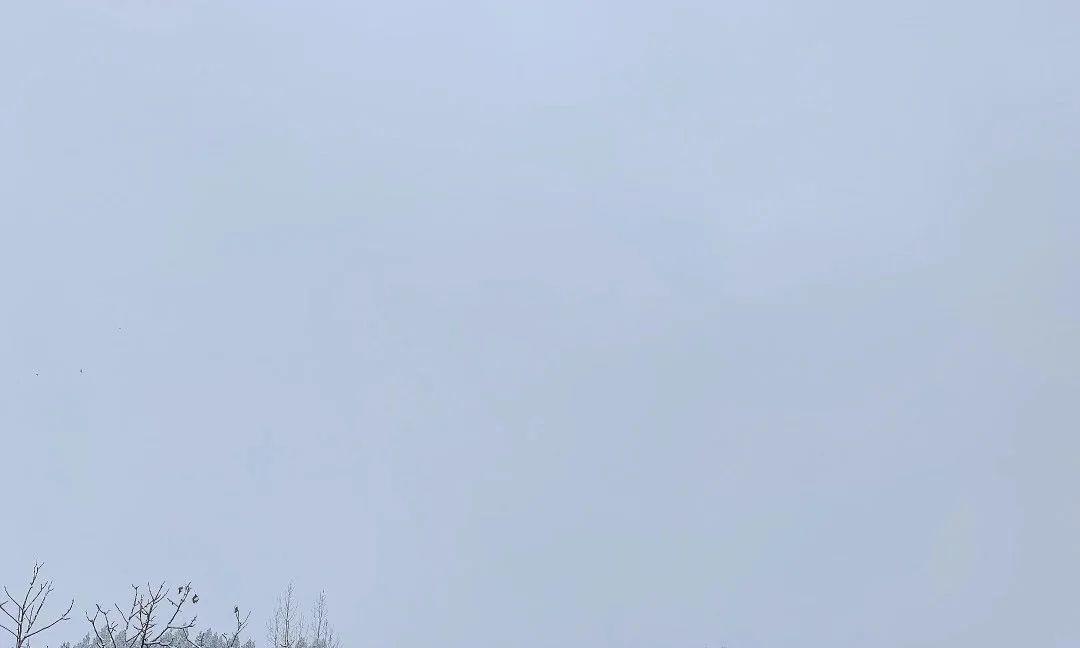 卫辉柳树岭很哇塞!打雪仗绝对好地方,千万不要错过!