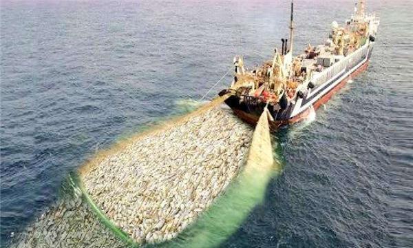 世界最大渔船造价高达4亿,看完捕鱼全过程,真为鱼捏了把汗!