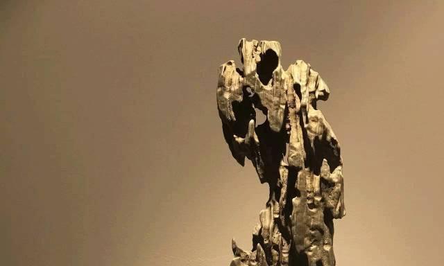 太湖石赏石文化,文人审美趣味,山水相映生辉