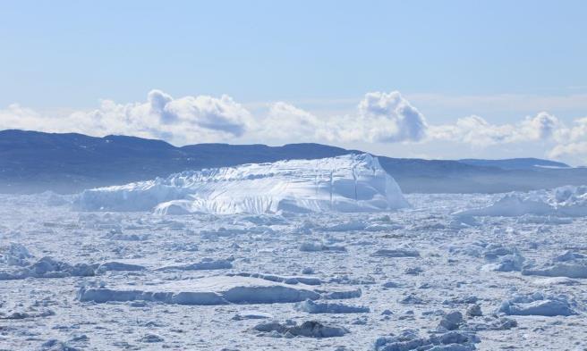 冻土层掩埋4.1万年的生物,被成功复活,科学家却感到后怕