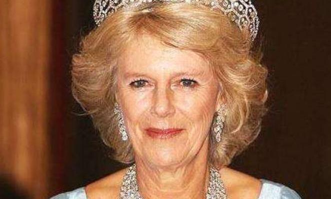 73岁卡米拉不卑不亢!跟女王同乘马车出行,提前享受王后待遇
