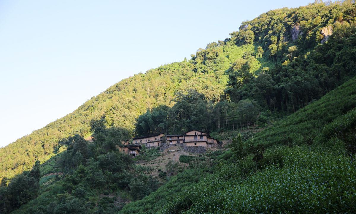 陕西紫阳茶山上的石板房民居:住过六户人家,远看像山寨