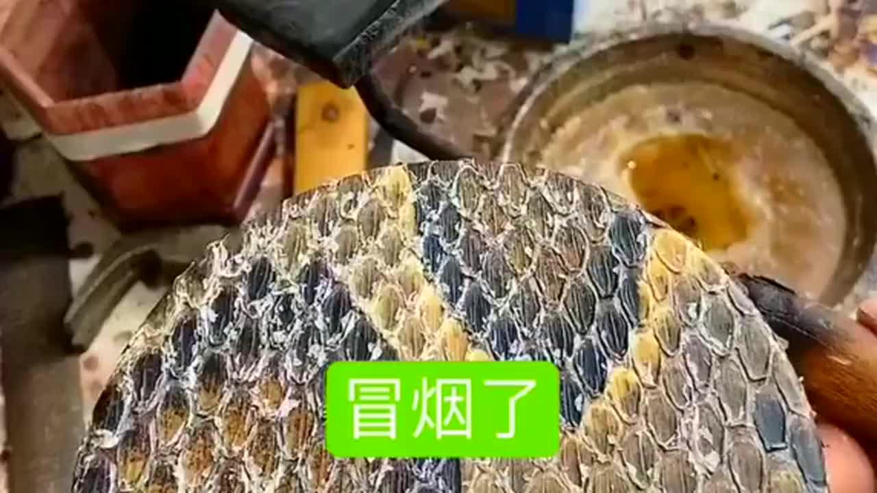 原来二胡上的蛇皮是在高温下完成加固的以前还以为是粘住的