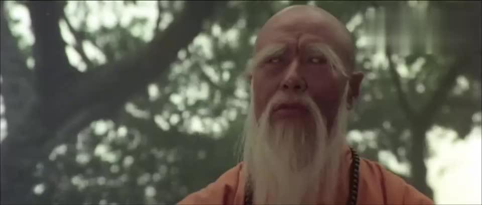 少林木人巷:少林天罡伏魔功,竟能手劈巨石,大破神功狮子吼