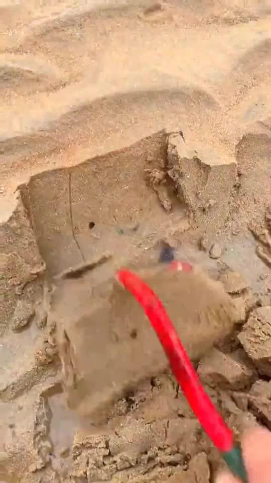 今天海滩边上发现了这个在洞口喷了点盐里面的小家伙立...