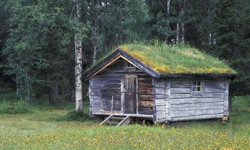俄罗斯一处森林爆款木屋,如同住进油画里,为啥却不能随便靠近?