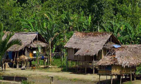 世界唯一纯女性部落,部落里面无男性,生儿育女方式很特殊