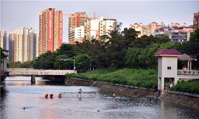 清远这条河涌经常有人野泳,玄真山水乐园就在旁边,夜场都开了