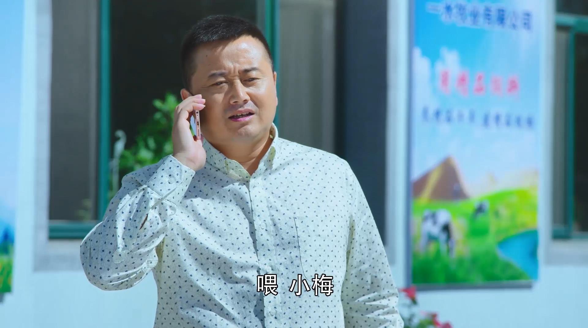乡村爱情9:小梅给一水打电话,让他做好迎接郭书记的准备!