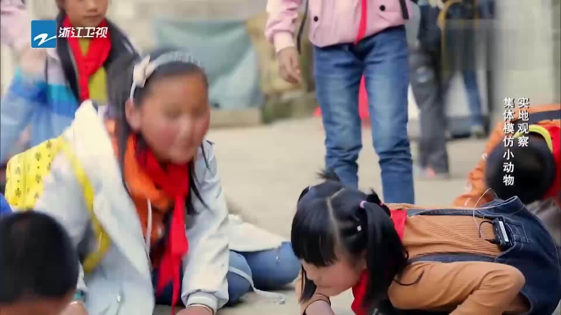 同一堂课:杨祐宁要去当老师,特意找昔日老师请教,心情忐忑