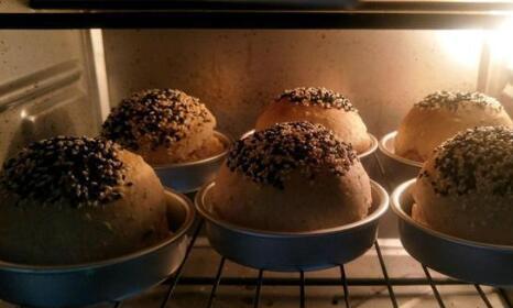 欧式汉堡好吃但很贵,自制汉堡胚,用全麦不长一点肉!
