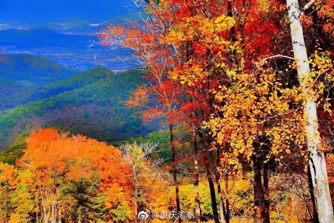 松花湖度假区是国内唯一兼具大型目的地滑雪度假区和大城市最近的滑雪