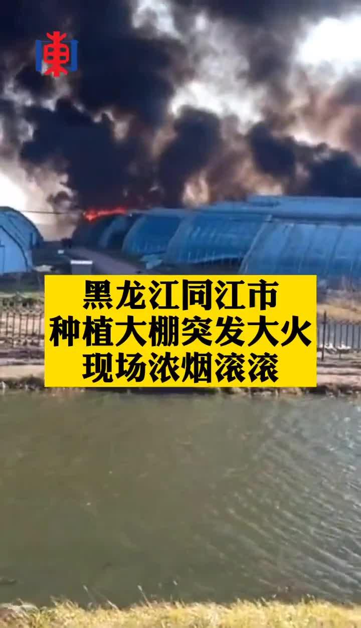 黑龙江佳木斯同江市某种植大棚突发大火!